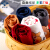 兪兆林YUZHAOLIIN子供服子供服Tシャツ男女子供用長袖上着赤ちゃん服の中で、子供用トップスの中で春新作オーダーメイドTシャツ1-文字小熊1-大紅120